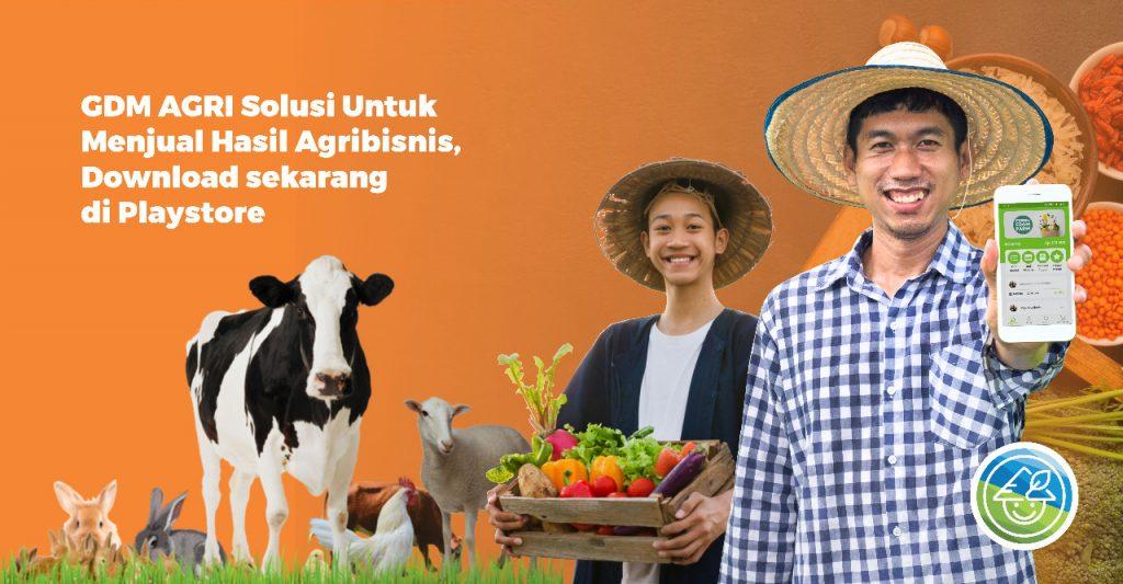 aplikasi pertanian GDM AGRI