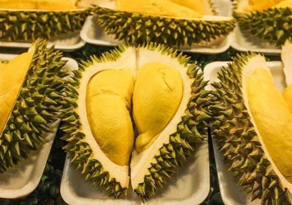 harga durian terkini