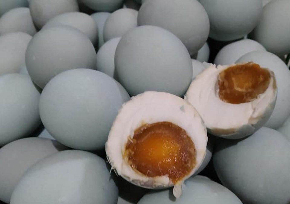 harga telur bebek